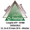 SFP -SFMM
